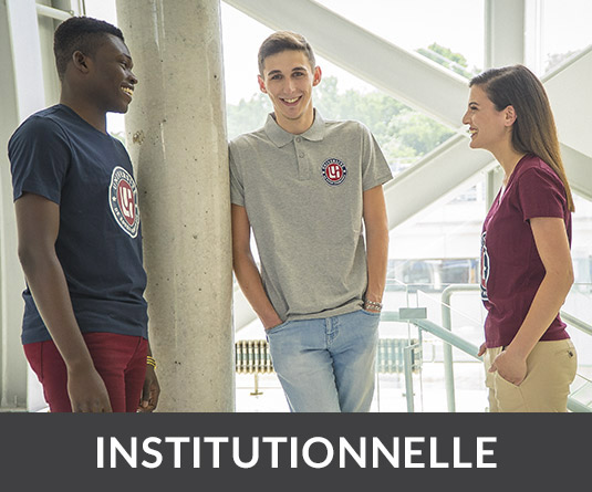 Collection institutionnelle